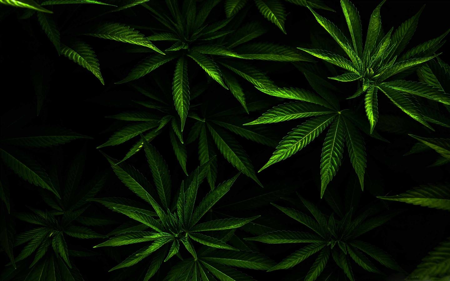 The Weed Mac Wallpaper Download