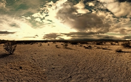 The Desert Tortoise Natural Area Mac wallpaper