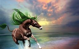 Young Horse Mac wallpaper