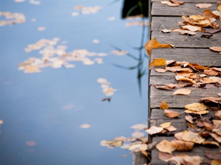 Autumn Leaves On Wooden Bridge Mac Wallpaper