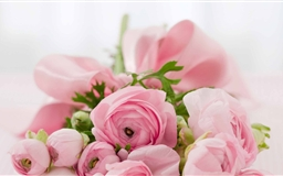 Pink Flowers Bridal Bouquet Mac wallpaper