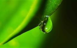 Water Drop Macro Mac wallpaper