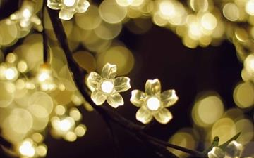 Light Flowers Mac wallpaper