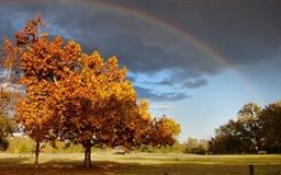 Double Rainbow Mac wallpaper
