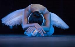 The Ballet Mac wallpaper