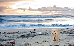 Danbo On The Beach Mac wallpaper