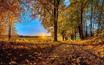 Pathway Autumn Mac wallpaper