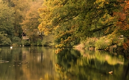 Boathouse At Winkworth Mac wallpaper