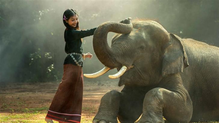 Elephant Training Mac Wallpaper