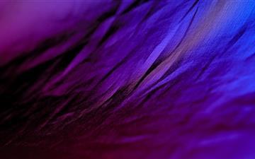 Purple Cloth Mac wallpaper