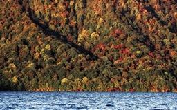 A Change Of Seasons Mac wallpaper
