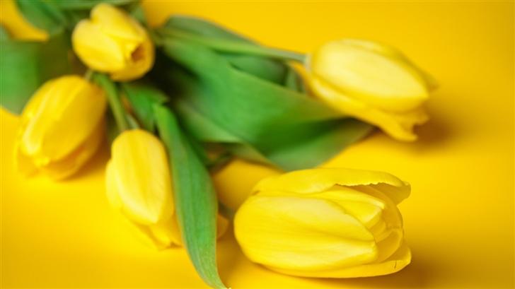 Easter Flowers Mac Wallpaper