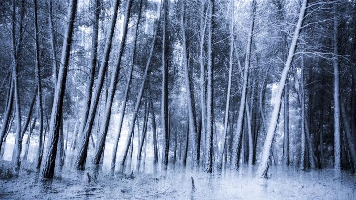 Eternal Winter Mac Wallpaper