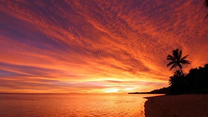 Exotic Sunset Mac Wallpaper