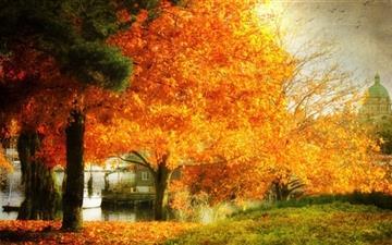 A Dreamy Fall Mac wallpaper