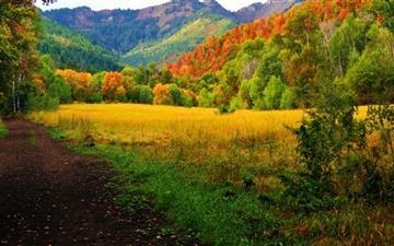 Provo Canyon Fall Colors Mac wallpaper