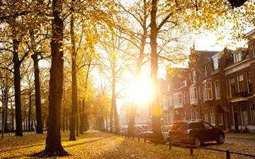 Sunny Autumn Afternoon Mac wallpaper