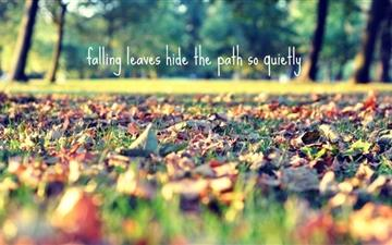Falling Leaves Hide The Path Mac wallpaper