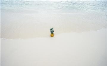 Pineapple in the beach sand Mac wallpaper