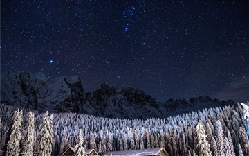 Night sky over a snowy forest Mac wallpaper