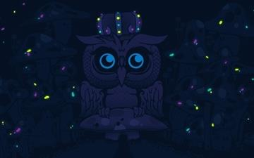 Imagine blue owls Mac wallpaper