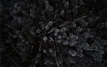 Winter Composing Mac wallpaper
