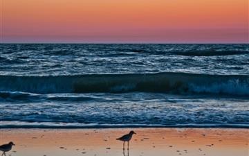 Sunset In Naples Florida Mac wallpaper