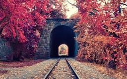 Armenia yerevan railway park