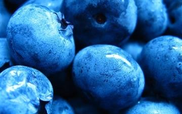 Blueberries Berry Drops Mac wallpaper