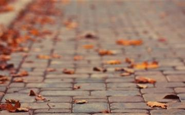 October Leaves Mac wallpaper