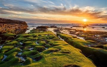 Pacific ocean green rocks Mac wallpaper