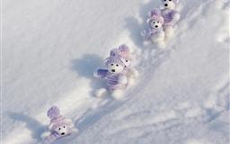 Teddy Bears Winte Break