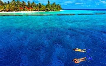 Snorkeling vacation Mac wallpaper