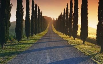 Trees Italy Roads Mac wallpaper