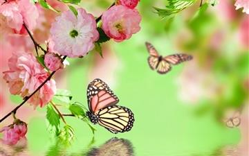 Springtime Joy Mac wallpaper