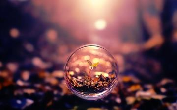 Small Plant In A Bubble Digital Art Mac wallpaper