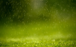 Rain Mac wallpaper