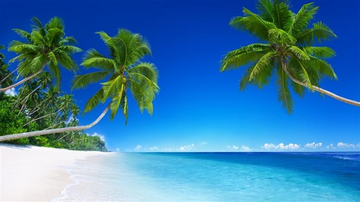 Beach holiday Mac Wallpaper