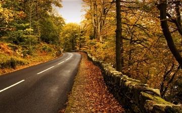 Autumn Road 2 Mac wallpaper