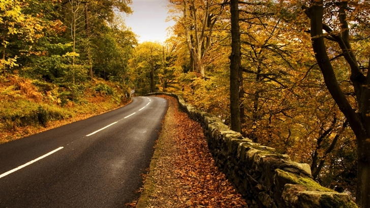 Autumn Road 2 Mac Wallpaper
