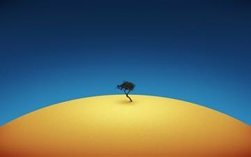 A tree Mac wallpaper