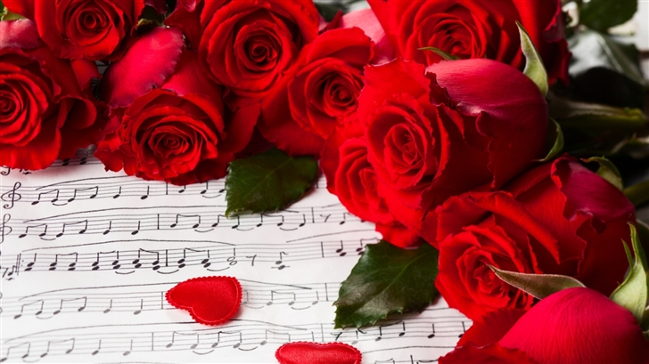 Save My Love For Loneliness Ipad Air Wallpaper Download: Rosa Rugosa Mac Wallpaper Download