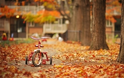 Tricycle Mac wallpaper
