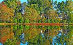 Lake and trees Mac wallpaper