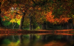 Fall Flood