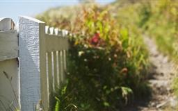 A Path Well Trodden Mac wallpaper