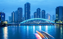 Tokyo Night Bridge Landscape Mac wallpaper
