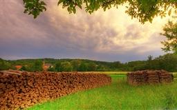 Meadow Summer Mac wallpaper