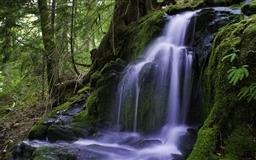 Beautiful Forest Waterfall Mac wallpaper