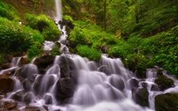 Forest Waterfall Summer Mac wallpaper